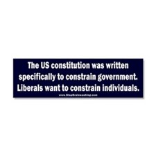 Liberals taking liberties Car Magnet 10 x 3