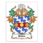 Pallas Coat of Arms Small Poster