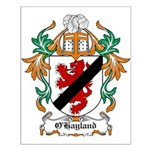 O'Hayland Coat of Arms Small Poster