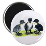 "Blue Swedish Ducklings 2.25"" Magnet (10 pack)"