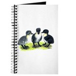 Blue Swedish Ducklings Journal