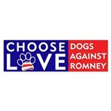Official DAR &amp;quot;CHOOSE LOVE&amp;quot; Bumper Sticker