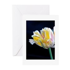 Flowers: Tulip Greeting Cards (Pk of 10)