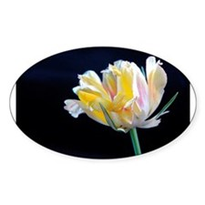 Flowers: Tulip Decal