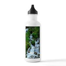 Mountain spring Water Bottle