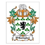 O'Goligher Coat of Arms Small Poster