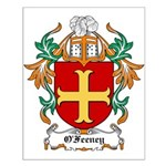 O'Feeney Coat of Arms Small Poster