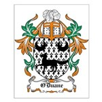 O'Duane Coat of Arms Small Poster