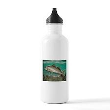 Snook Water Bottle