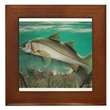Snook Framed Tile