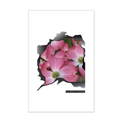 PINK DOGWOOD Mini Poster Print