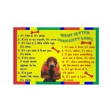Irish items Rectangle Magnet (100 pack)