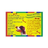Cute Irish red and white setter Rectangle Magnet