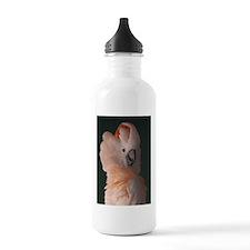 Moluccan Cockatoo Water Bottle