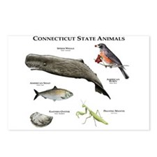 Connecticut State Animals Postcards (Package of 8)