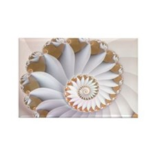 """White Nautilus"" Fractal Art Rectangle Magnet"
