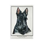 Scottish Terrier Open Edition Rectangle Magnet (10