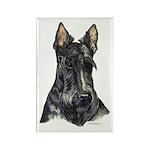 Scottish Terrier Scotty Rectangle Magnet (100 pack