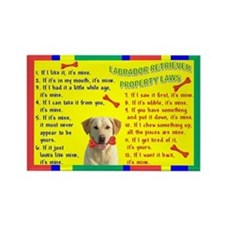 Funny Yellow labrador Rectangle Magnet
