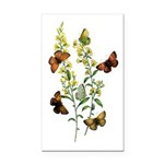 Butterflies of Summer Rectangle Car Magnet
