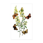 Butterflies of Summer Sticker (Rectangle 50 pk)