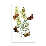 Butterflies of Summer 20x12 Wall Decal