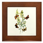 Butterflies of Summer Framed Tile