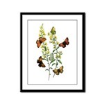 Butterflies of Summer Framed Panel Print
