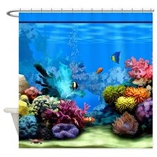 Tropical Fish Aquarium with Bright Colored Coral S