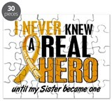 Never Knew a Hero 2 Appendix Cancer Puzzle
