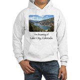 Lake City Dreaming Jumper Hoody