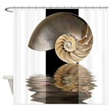 Nautilus Shell Shower Curtain