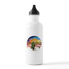 XMusic2 - Beagle Water Bottle