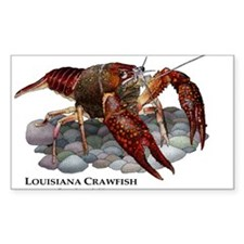 Louisiana Crawfish Decal