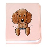 Pocket Irish Setter Pup baby blanket