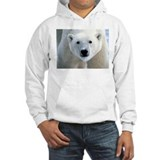 Polar bear Jumper Hoody