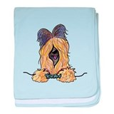 Pocket Briard baby blanket