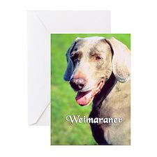 Weimaraner  Greeting Cards (Pk of 10)