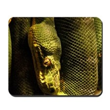 Tree Boa - Mousepad