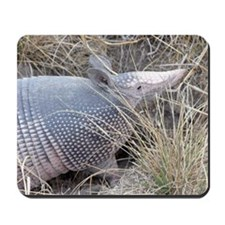 Armadillo - Mousepad