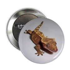 "Crested Gecko 2.25"" Button"