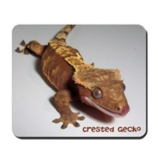Crested Gecko Mousepad