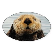Alaskan Sea Otters Decal