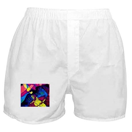 Eagle Spirit Boxer Shorts