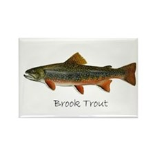 Painting of Brook Trout Rectangle Magnet