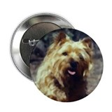 "Cairn Terrier Art 2.25"" Button (10 pack)"