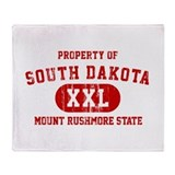 Property of South Dakota, Mount Rushmore State St
