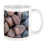 Ladybug and Pebbles Small Mug
