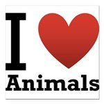 i-love-animals.png Square Car Magnet 3