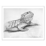 Poster - drawing of a bearded dragon